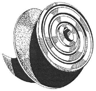 Vista Posterior do Impulsor com suas Ranhuras em Espiral